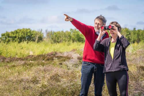Nationaal park Duinen van Texel, vogels kijken